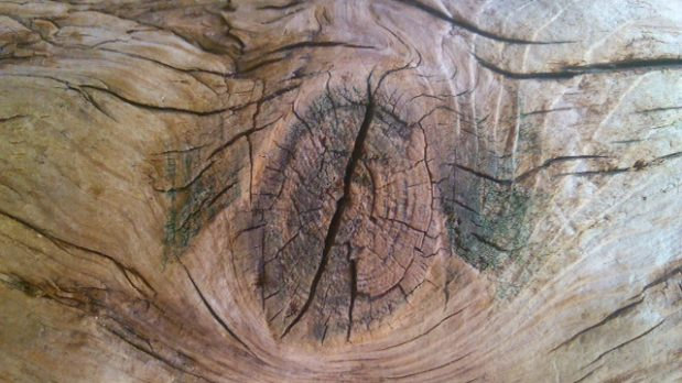 Knoestige blikken (kleine skandinavische roman)